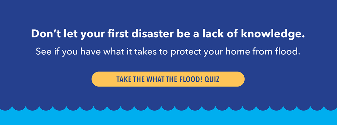 What the Flood? Quiz